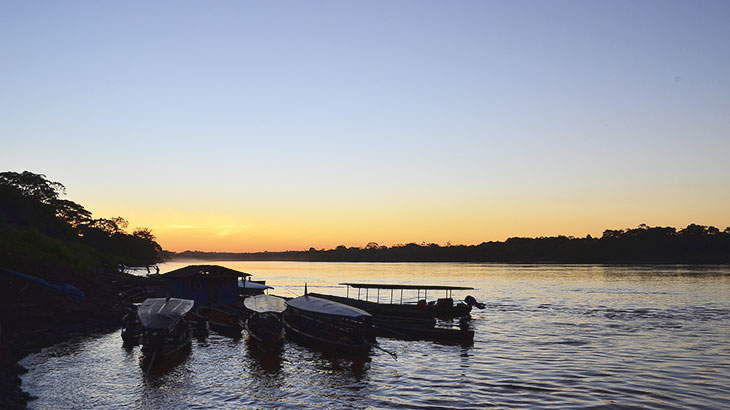 Nightfall in tambopata