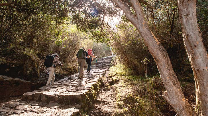 Walk on the inca trail