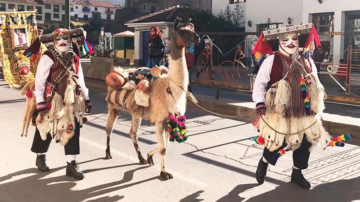 cusco festivities, llama