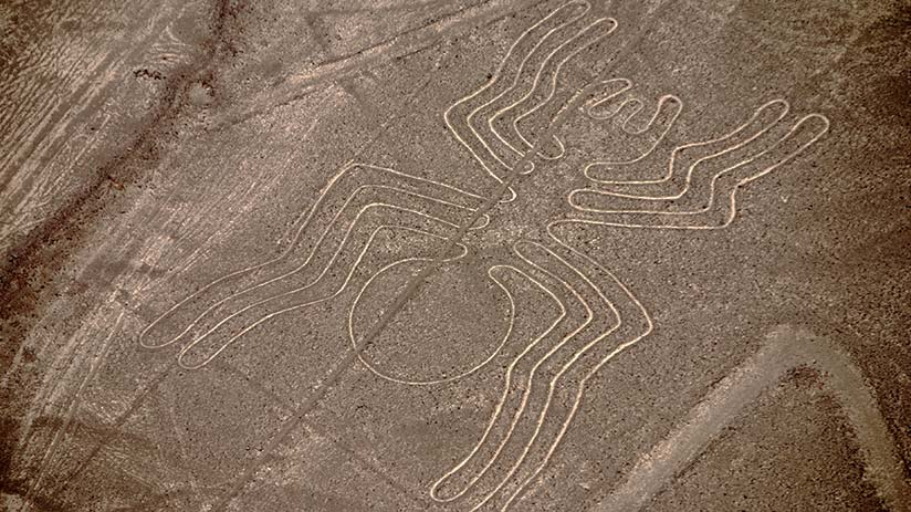 best way to see nazca lines spider