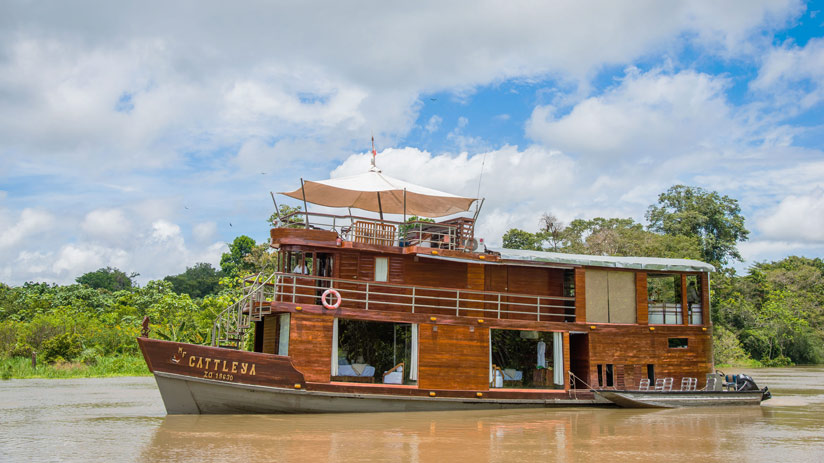 amazon cruises peru tourism