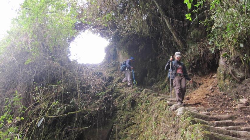 machu picchu inca trail trek