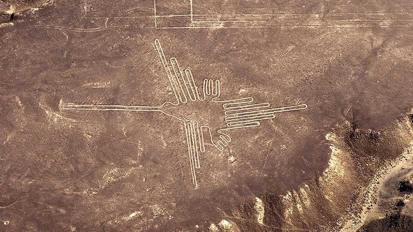 hummingbird nazca lines peru