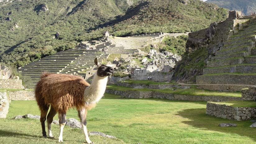 machu picchu cusco peru travel
