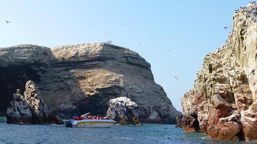 paracas reserve peru tour