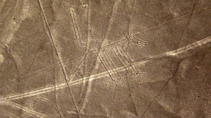 how were nazca lines dog made