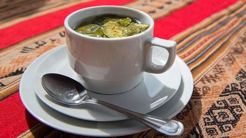 drink coca tea for altitude sickness