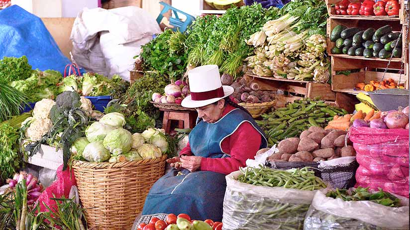 visit san pedro market cusco