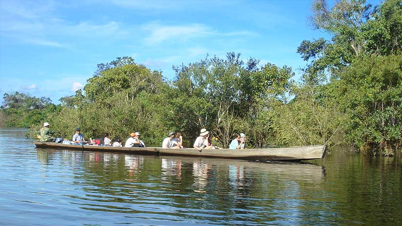 group or individual tours peru amazon
