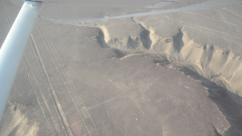 hummingbird a nazca lines, popular tourist destinations in peru