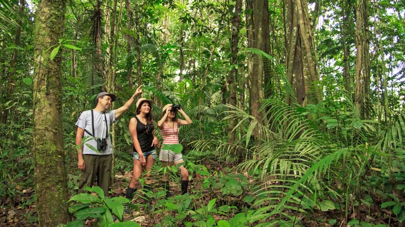 the best amazon tours peru