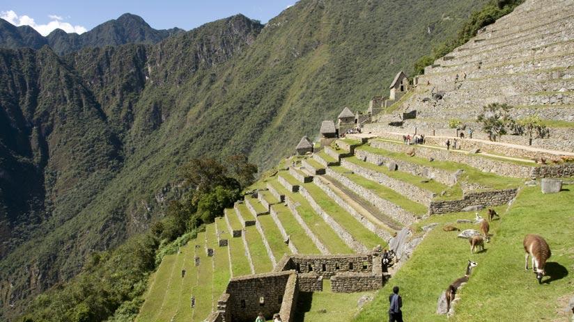 amazing view of machu picchu citadel in peru