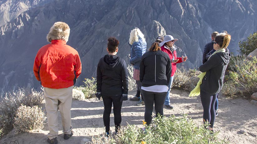 colca canyon guided tour