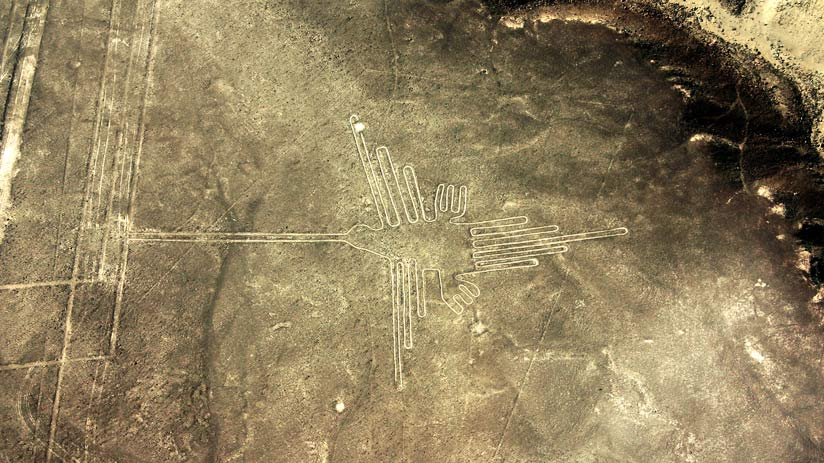 fly over nazca lines hummingbird