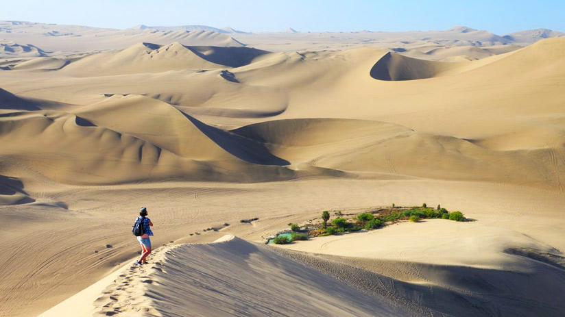 sandboarding in paracas what to do in paracas