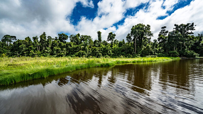 travel to tambopata best time to travel