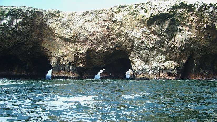 paracas national reserve tour sea