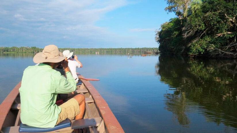 tambopata national reserve cocococha sachavacayoc