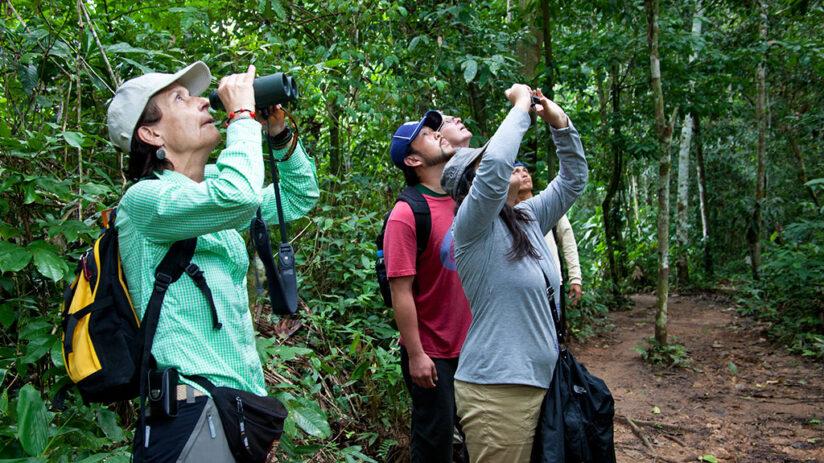 tambopata national reserve in peru