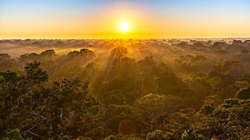 tambopata national reserve sunrise