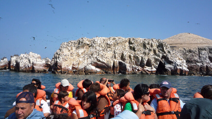 vacation with friends ballestas islands