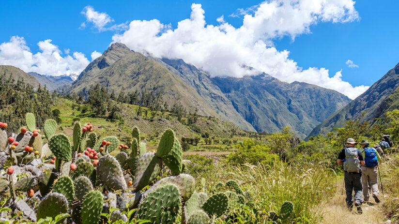 trekking to machu picchu inca trail