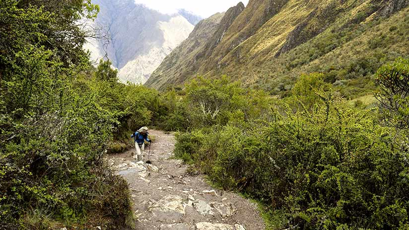trekking to machu picchu landscape path