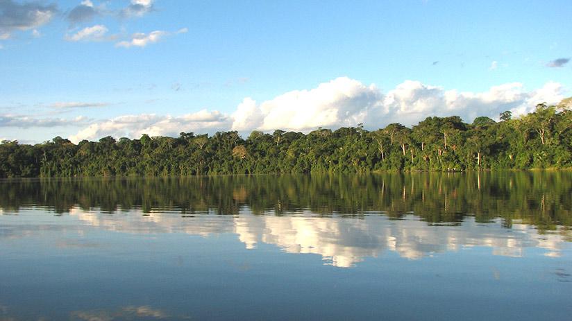 cusco jungle tour lake sandoval