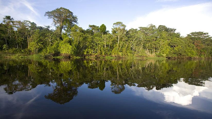 ecotourism in peru pacaya samiria national reserve