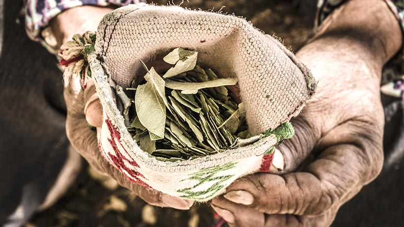 things to know altitude sickness coca leaves