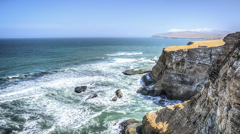 family vacation ideas paracas national reserve