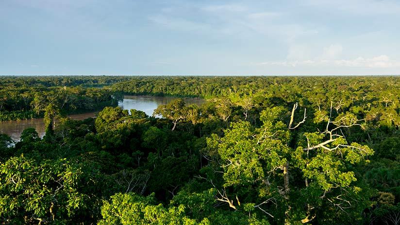 peru itinerary tambopata national reserve