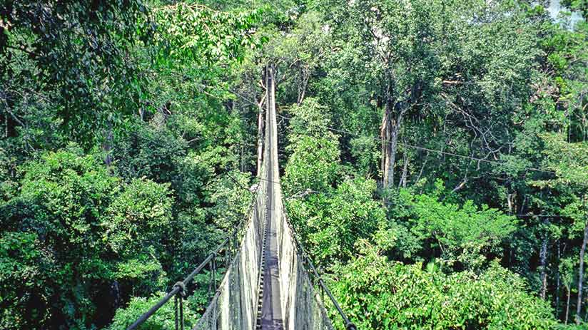 tourist attractions in peru iquitos