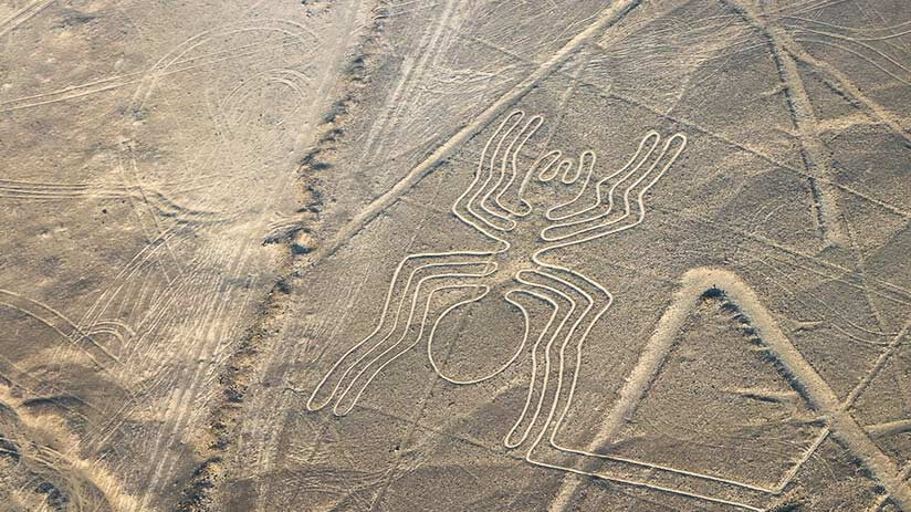 things to do in nazca fly over the lines