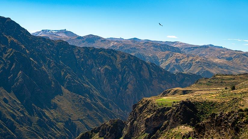 fun things to do in peru explore colca canyon