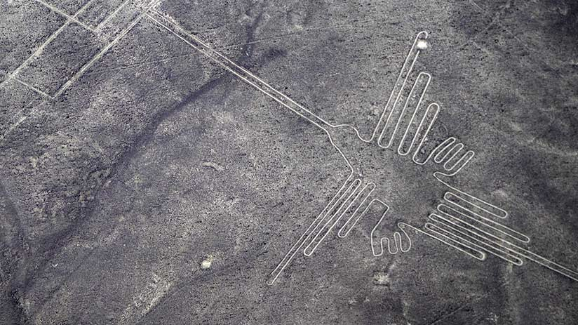 things to do in nazca lines hummingbird