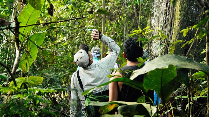amazon tours from cusco to iquitos