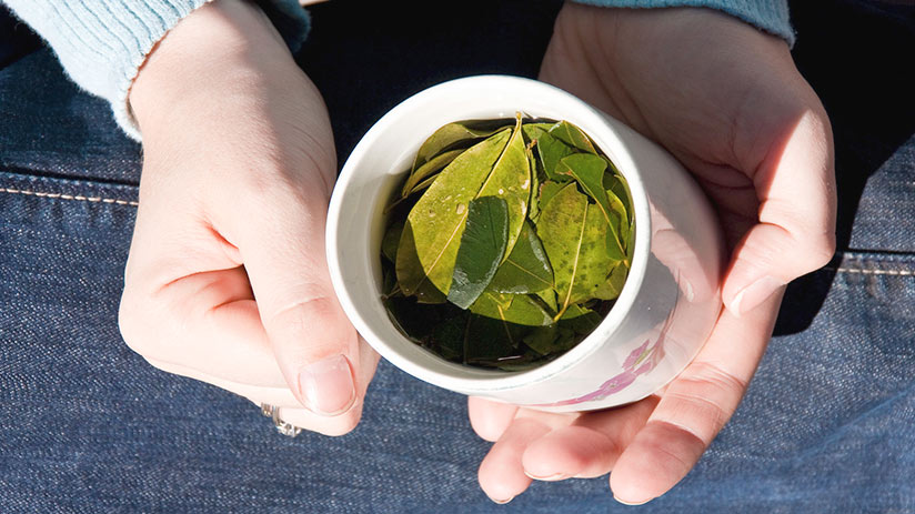 traditional peruvian non alcoholic drinks coca tea