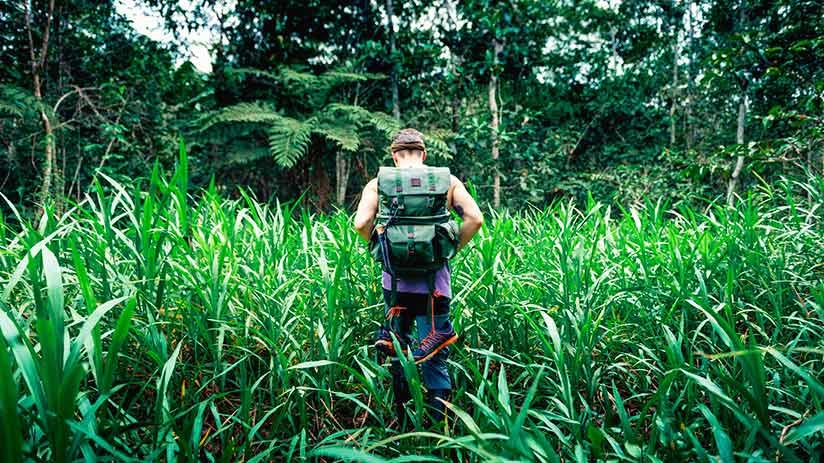 amazon in peru reasons to visit remoteness