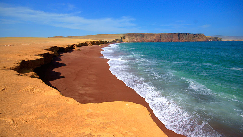 nature reserves in peru paracas national reserve