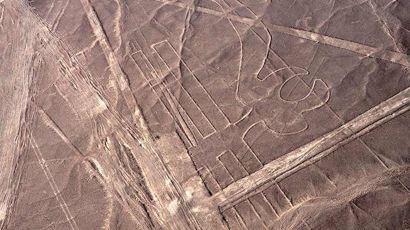 nazca lines images parrot