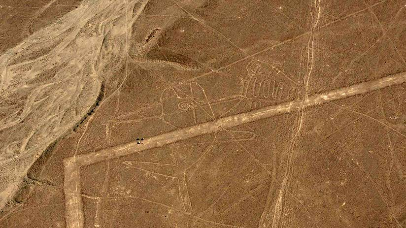 nazca lines images whale