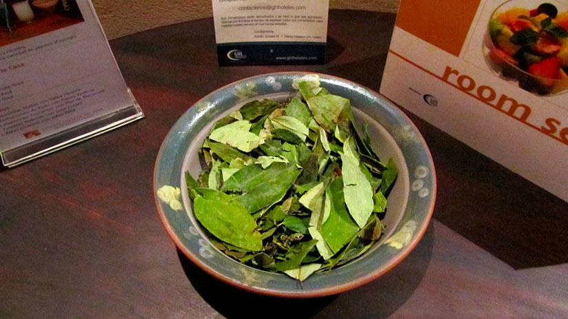 peruvian superfoods coca leaf