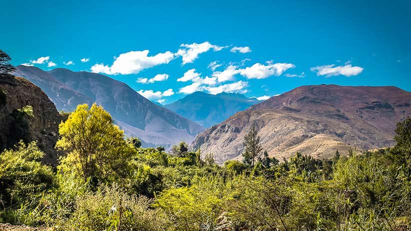 biodiversity in Peru natural areas