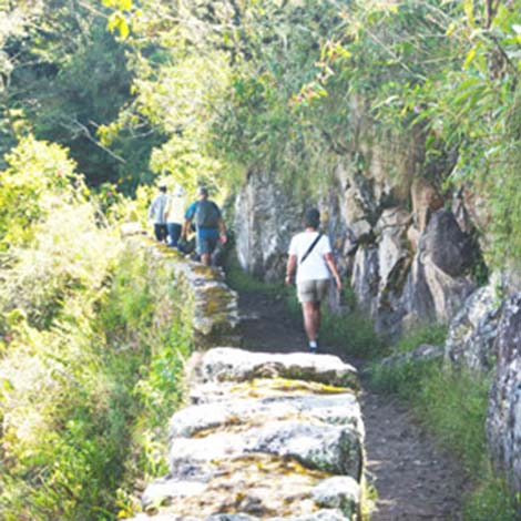 Hike the Wayna Picchu Mountain
